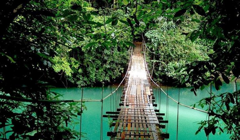 Monteverde Costa Rica Cloudforest
